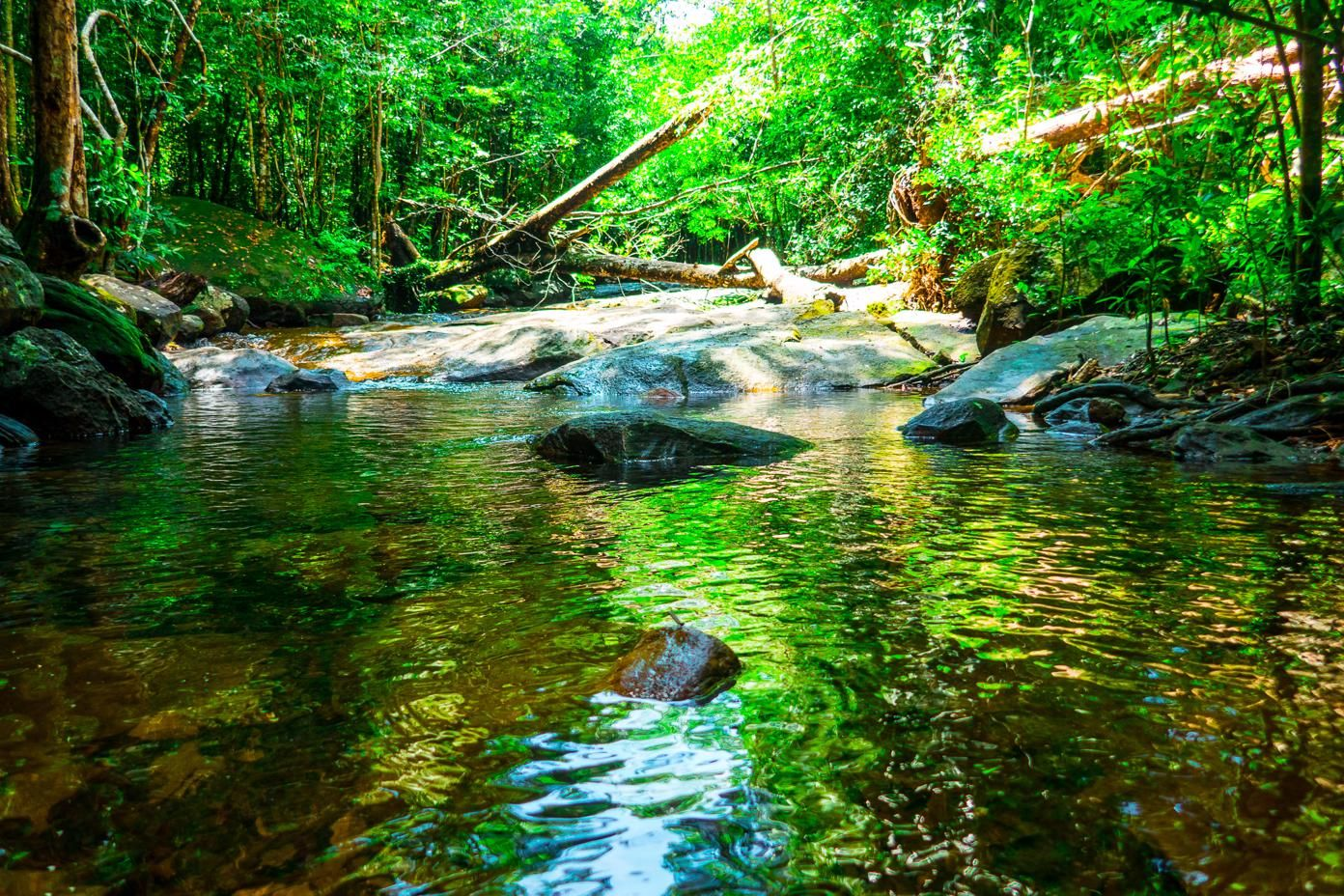 Phu Quoc Travel Guide - Suoi Tranh Waterfall