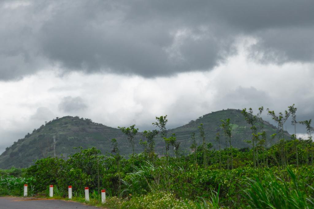 Views on the motorbike ride between Pongour falls and Elephant Falls Dalat