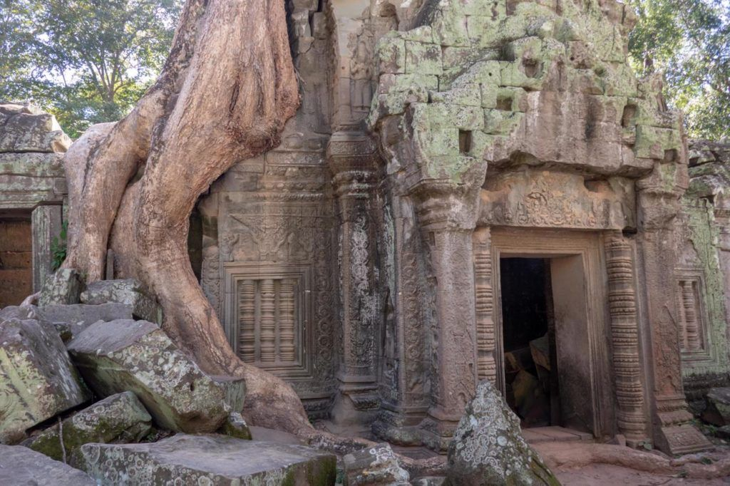 Temples of Siem Reap Ta Phrom the temple in the forest