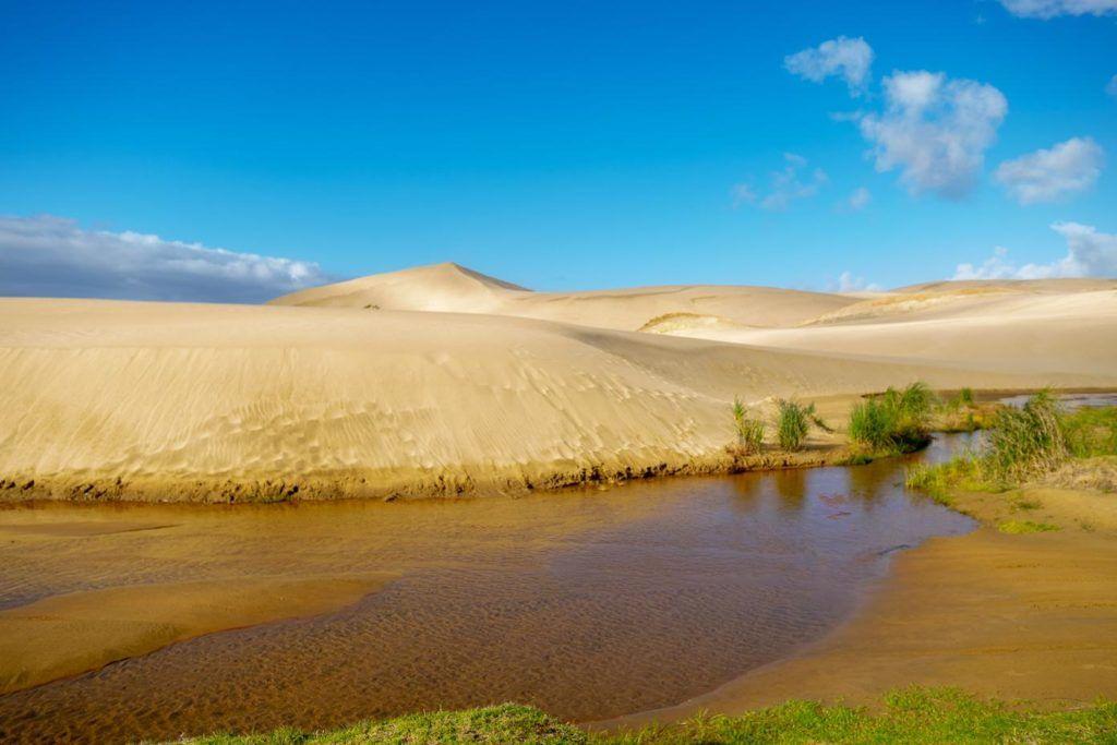 North Island New Zealand Highlights Te Paki Sand Dunes Northland