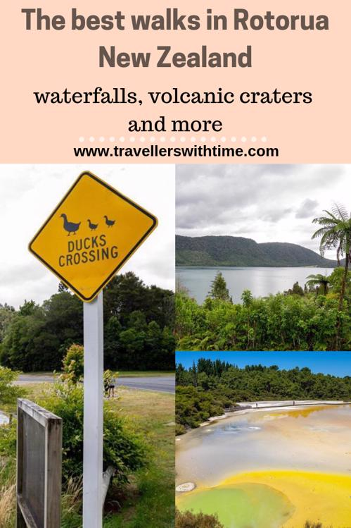 A guide to the best Rotorua Walks, whether you're looking for something long or short, difficult or easy, relaxing or rewarding, you'll find a walk for you in Rotorua #rotorua #newzealand #thingstodo #redwoods #geothermal #travellerswithtime