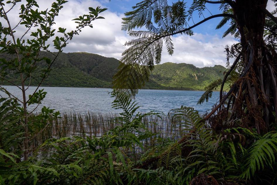 The Blue Lake walk is one of the best Rotorua walks