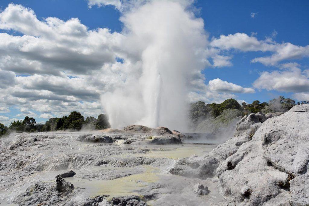 Pohutu Geyser at Te Puia geothermal park Rotorua
