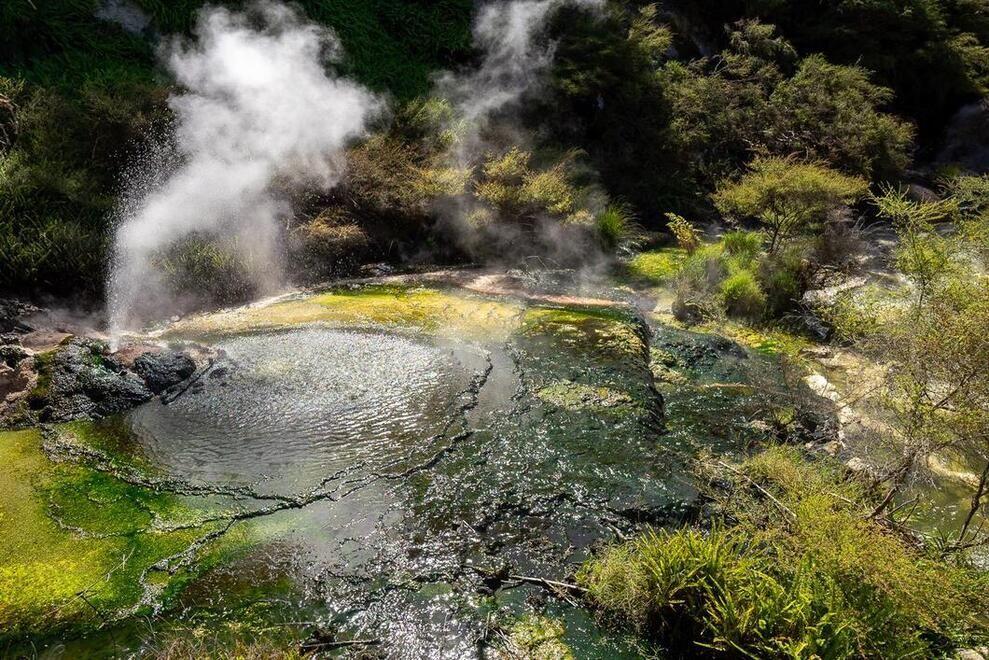Best geothermal park in Rotorua
