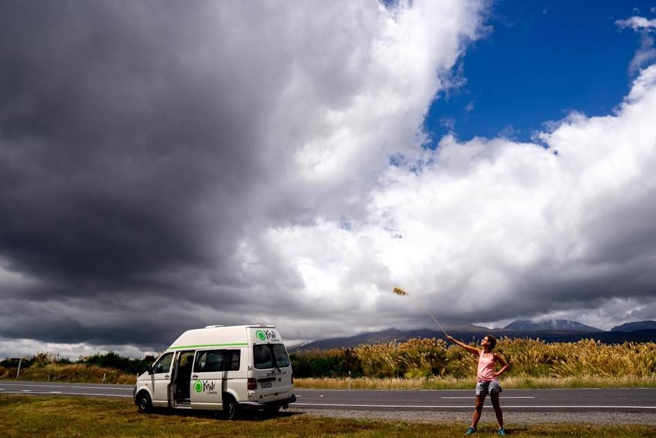On the road in Tongariro National Park
