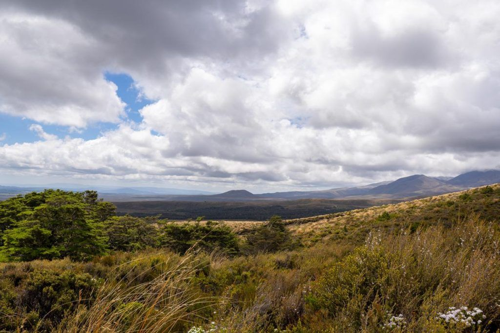 View on the Ridge walk outside Whakapapa Village