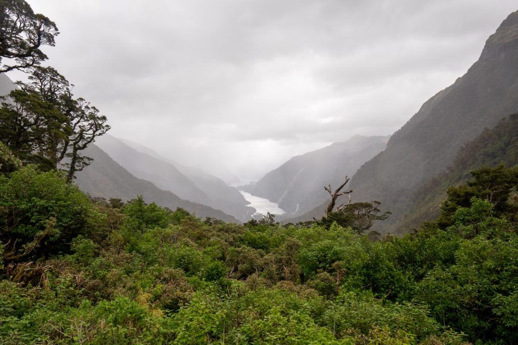 The view from Wilmot pass of Doubtful Sound