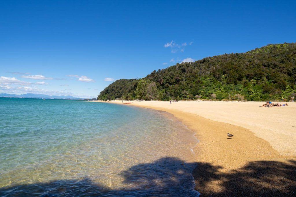 Beach in Abel Tasman National Park - New Zealand Bucket List